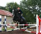 Sparky,16.1hh,  born 2004, backed & ridden away, a great prospect(FOR SALE)